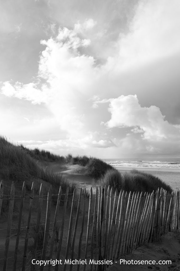Monochrome print, Where the dunes meet the beach, Fall in Holland, Helmgras
