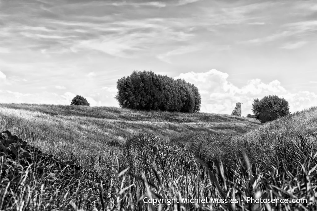 Monochrome print, Summer in Holland, landscape with billboard near Ypenburg